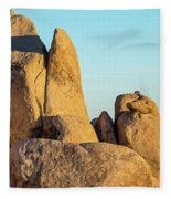Boulders In A Desert, Joshua Tree Fleece Blanket