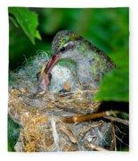 Broad-billed Hummingbird And Young Fleece Blanket
