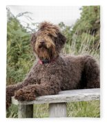 Brown Labradoodle Fleece Blanket