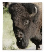 Buffalo Painterly Fleece Blanket