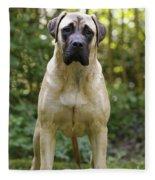 Bullmastiff Dog Fleece Blanket