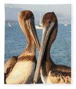 California Pelicans Fleece Blanket