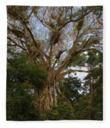 Cathedral Fig Tree Fleece Blanket