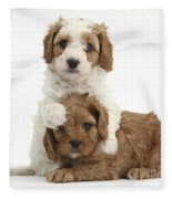 Cavapoo Puppies Hugging Fleece Blanket