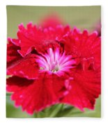 Cherry Dianthus From The Floral Lace Mix Fleece Blanket