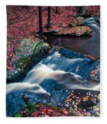 Chesterfield Gorge New Hampshire Fleece Blanket