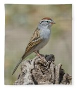 Chipping Sparrow Fleece Blanket