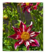 Christmas Star Dahlia And Bee Fleece Blanket