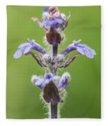 Common Bugle Fleece Blanket