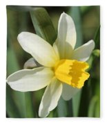 Cyclamineus Daffodil Named Jack Snipe Fleece Blanket