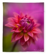 Dahlia Burst Fleece Blanket