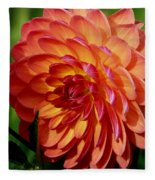 Dahlia Profile Fleece Blanket