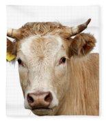 Detail Of Cow Head Fleece Blanket