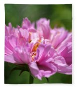Double Click Cosmos Named Rose Bonbon Fleece Blanket