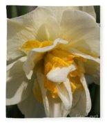 Double Daffodil Named White Lion Fleece Blanket