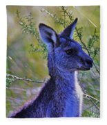 Eastern Grey Kangaroo Fleece Blanket