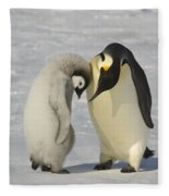 Emperor Penguins Fleece Blanket