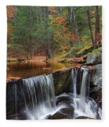 Enders Falls Fleece Blanket