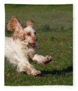 English Cocker Spaniel Fleece Blanket
