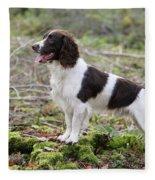 English Springer Spaniel Dog Fleece Blanket