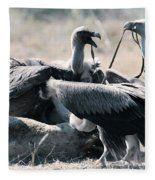 Eurasian Griffon Vulture Gyps Fulvus Fleece Blanket