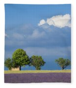 Evening In Provence Fleece Blanket