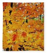 Fall Colors 2014-3 Fleece Blanket