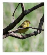 Female American Goldfinch Fleece Blanket