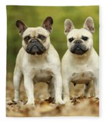 French Bulldogs Fleece Blanket