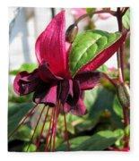 Fuchsia Named Roesse Blacky Fleece Blanket