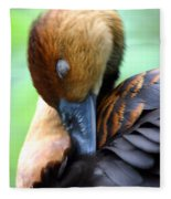 Fulvous Whistling Duck Fleece Blanket
