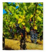 Grapes On The Vine Fleece Blanket