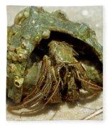 Green Striped Hermit Crab Fleece Blanket