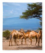 Group Of Camels In Africa Fleece Blanket