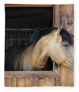 Horse In Stable Fleece Blanket