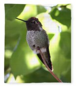Hummingbird Hangout Fleece Blanket