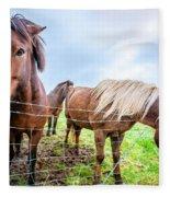 Icelandic Ponies Fleece Blanket