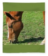 In Green Pasture Fleece Blanket