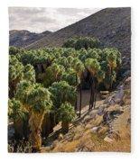 Indian Canyons - California Fleece Blanket