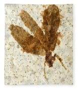 Insect Fossil Fleece Blanket