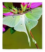 Luna Moth Fleece Blanket