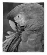 Macaws Of Color B W 17 Fleece Blanket