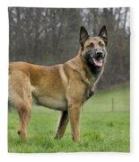 Malinois, Belgian Shepherd Dog Fleece Blanket