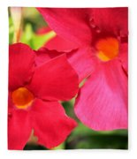 Mandevilla Named Sun Parasol Crimson Fleece Blanket