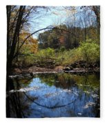 Mansfield Hollow Lake Fleece Blanket