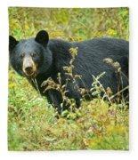 Meadow Black Bear Fleece Blanket
