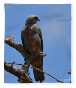 Merlin Falcon  Fleece Blanket