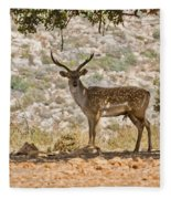 Mesopotamian Fallow Deer 5 Fleece Blanket