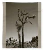 Joshua Tree National Park Landscape No 2 In Sepia Fleece Blanket