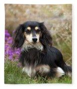 Miniature Long-haired Dachshund Fleece Blanket